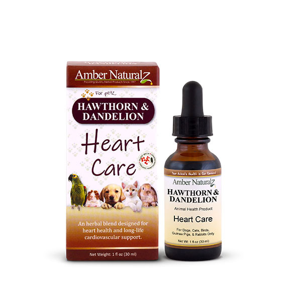 Amber Naturalz Amber Naturalz Hawthorne & Dandelion Supplement 1oz