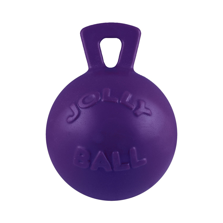 Jolly Pet Jolly Ball Dog Toy