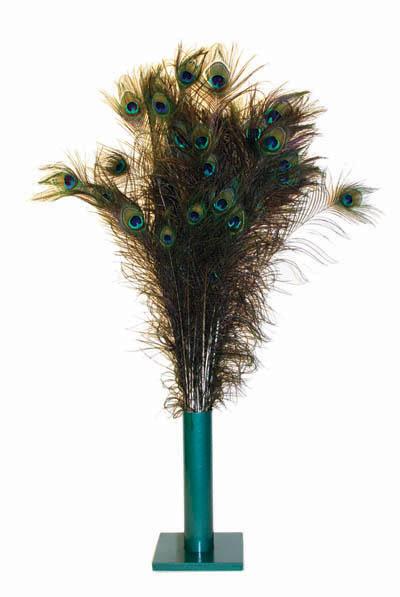 Vee Enterprises Vee Enterprises Natural Peacock Feather Cat Toy