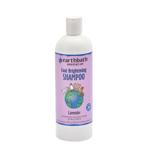 Earthbath Earthbath Coat Brightening Lavender Pet Shampoo 16oz
