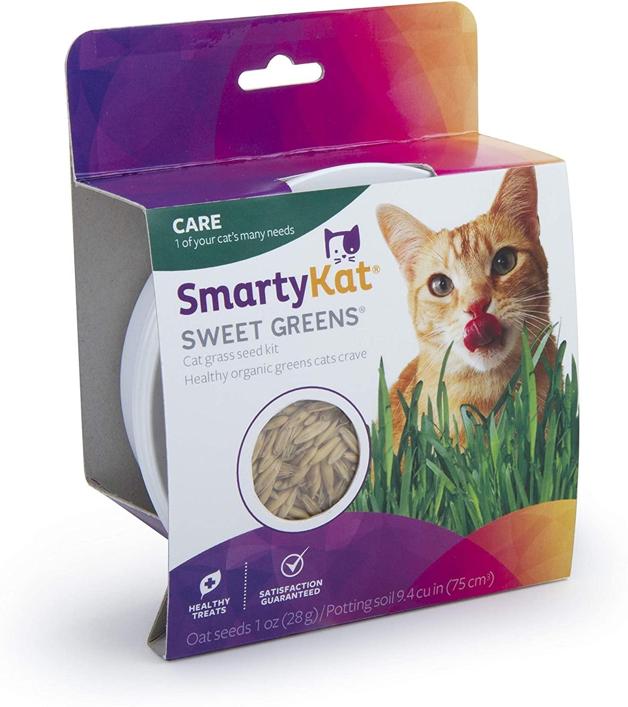 SmartyKat SmartyKat Sweet Greens Cat Grass Grow Kit