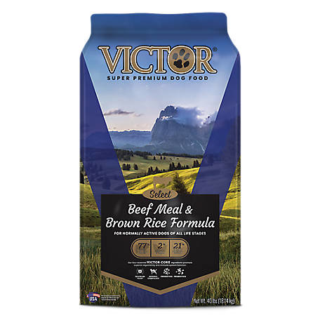 Victor Victor Beef Meal & Brown Rice Dry Dog Food