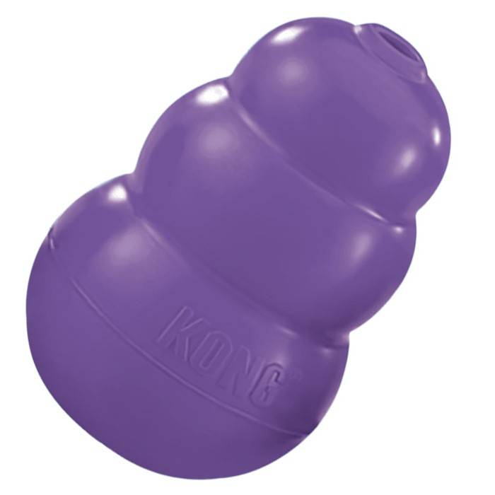 Kong Kong Senior Dog Toy