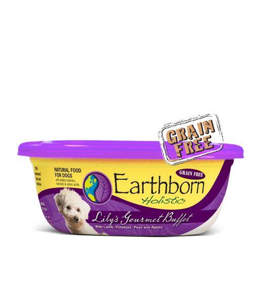 Earthborn Earthborn Lily's Gourmet Buffet in Sauce Wet Dog Food 8oz