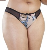 Playful Promises Gabi Fresh Celeste brief