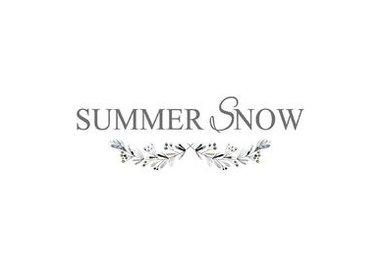 Summer Snow Art