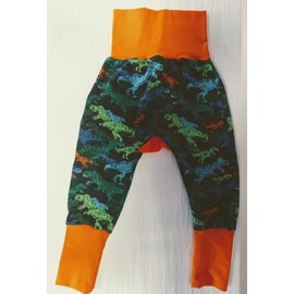 Dino Roar!! Grow With Me Pants 6mo-3y