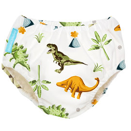 Dinosaur Swim Diaper/Training Pants Combo