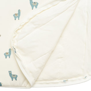 Kyte Baby Alpaca Bamboo Sleep Bag, 1 TOG