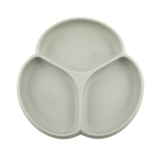 Sage G & S Suction Plate