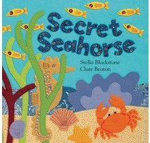 Secret Seahorse, Board Book