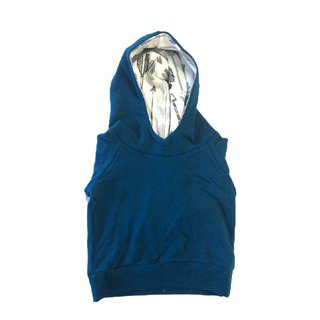 The Blue Sleeveless Hoodie