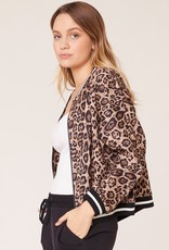 Cat fight leopard bomber