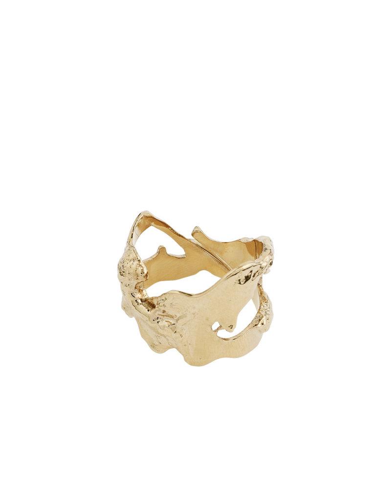 Pilgrim Compass Ring
