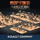 Flames of War Flames of War: USA- Assault Company (late)