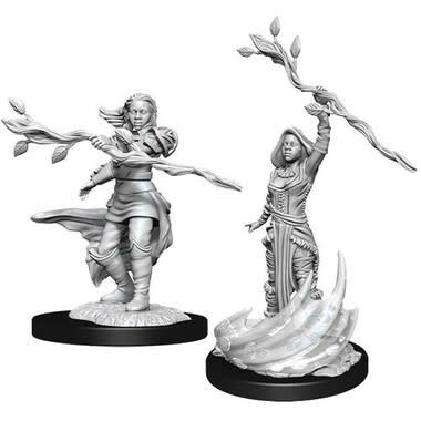 Wizkids D&D Nolzurs Miniature: Human Druid Female