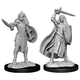 Wizkids Pathfinder Miniature: Human Champion Female