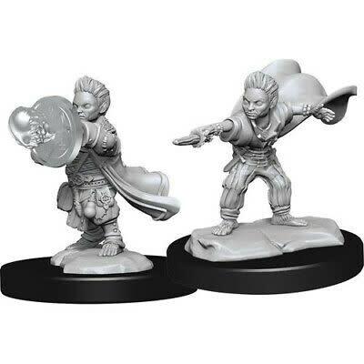 Wizkids Pathfinder Miniature: Halfling Wizard Mal