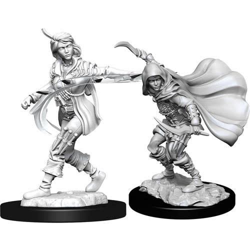 Wizkids Pathfinder Miniature: Human Rogue Female