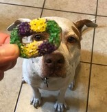 King CakesTreats for Dogs, 6 pk.