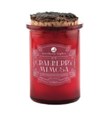 Cranberry Mimosa Candle, 5oz