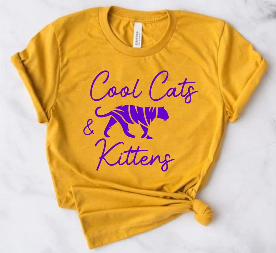 Cool Cats & Kittens