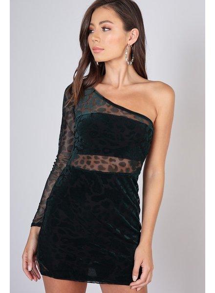 Jaden Leopard Dress