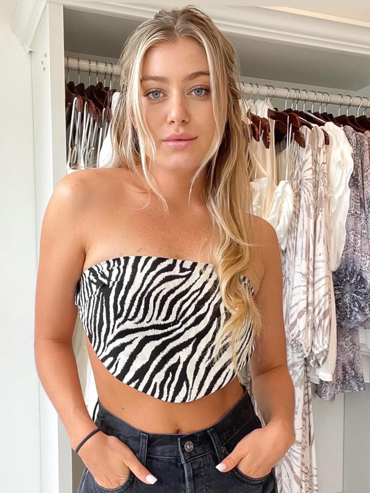Savannah Zebra Crop