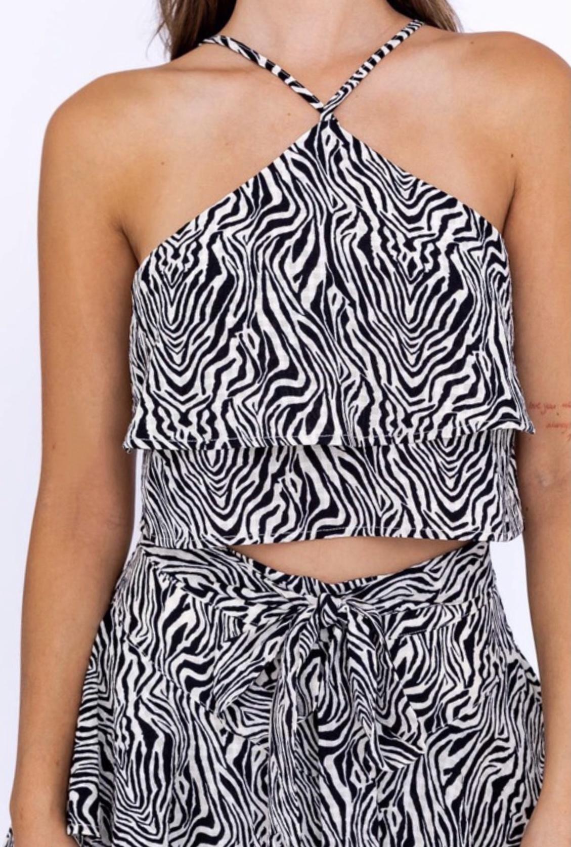 Nia Zebra Halter