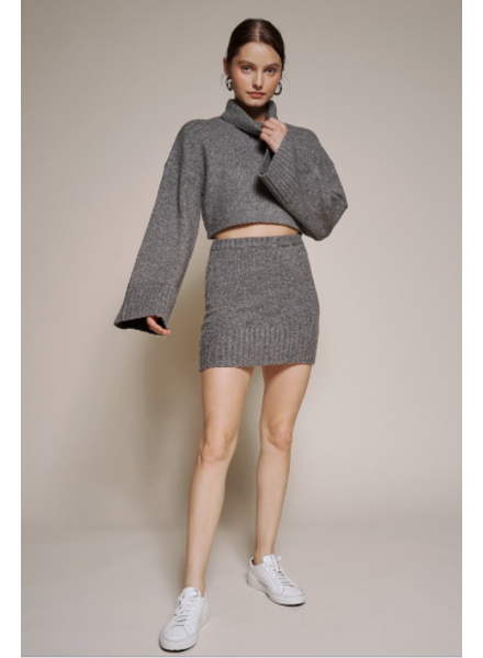 New Obsession Knit Skirt