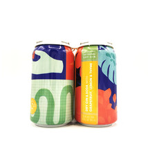 Dry Gin & Soda Grapefruit Lemon & Thyme 12oz (can) Collective Arts Distilling