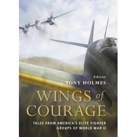 Osprey Publications WINGS OF COURAGE:AMERICA'S ELITE FTR.GPS