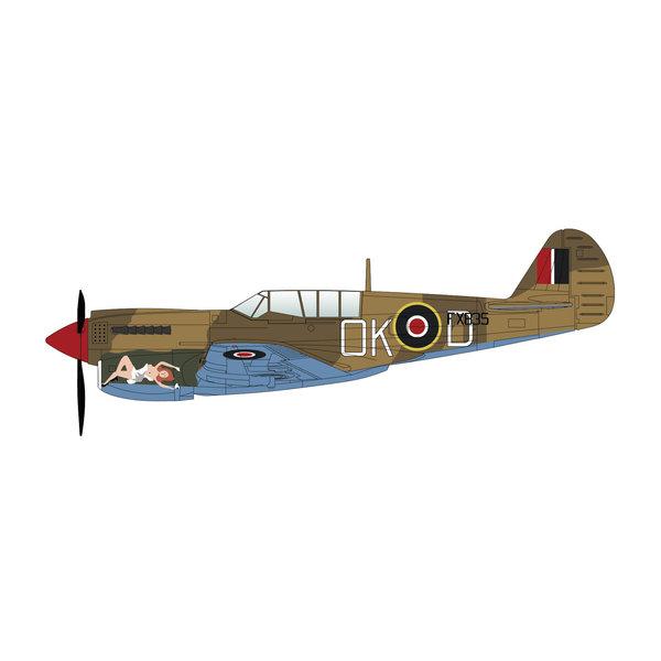 Hobby Master P40N Kittyhawk 450 Sqn.RAAF No Orchids 1:72