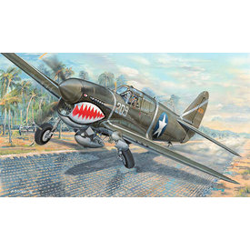 Trumpeter Model Kits P40F Warhawk USAAF all metal fighter with Packard Merlin engine 1:32