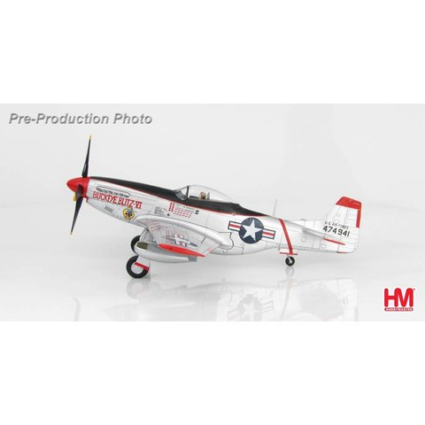 P51D 8FBW USAF Buckeye Blitz VI J.W. Rogers silver 1:48