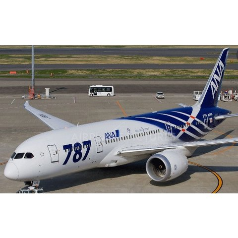 B787-8 ANA Special 787 JA802A 1:200 with stand