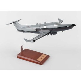 PC12 Pilatus USAF SP-50 Silver/grey 1:40 (KPPC12sptr)