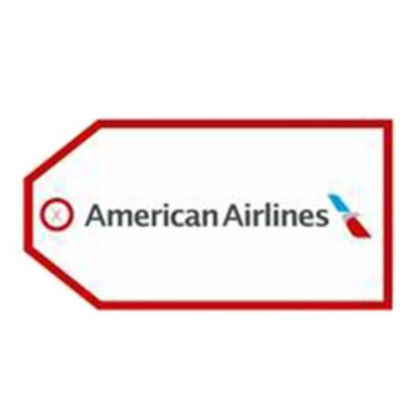 Luggage Tag American Airlines New