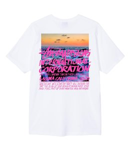 STUSSY CLEAR DAY TEE