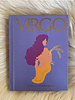 hachette book group hachette virgo book