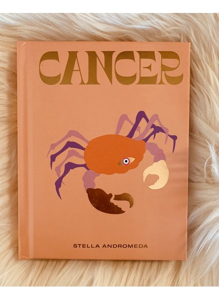 hachette book group hachette cancer book