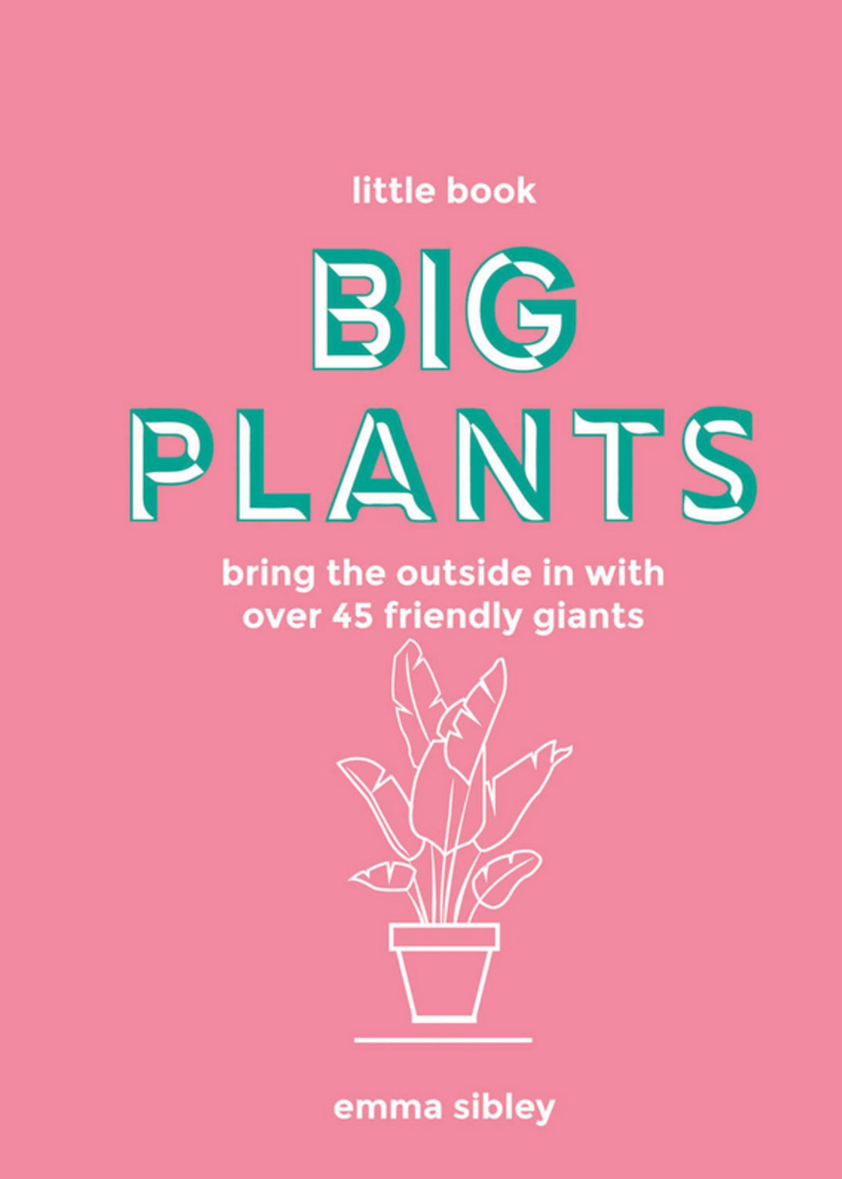 hachette book group hachette big plant book