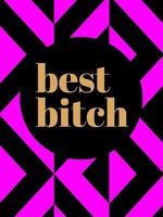 hachette book group best bitch book