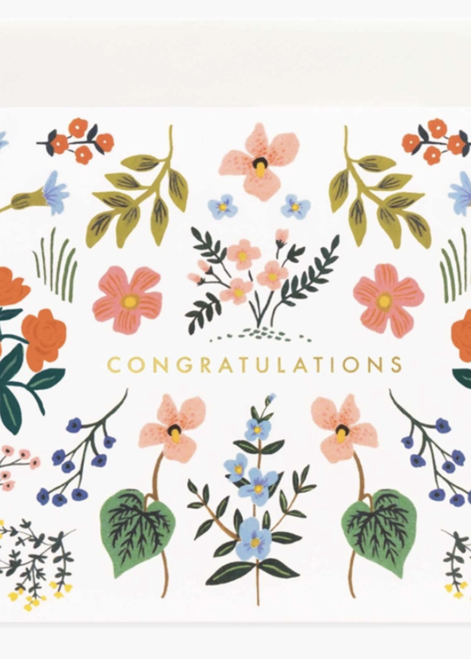 rifle paper co. rifle paper wildwood congrats card