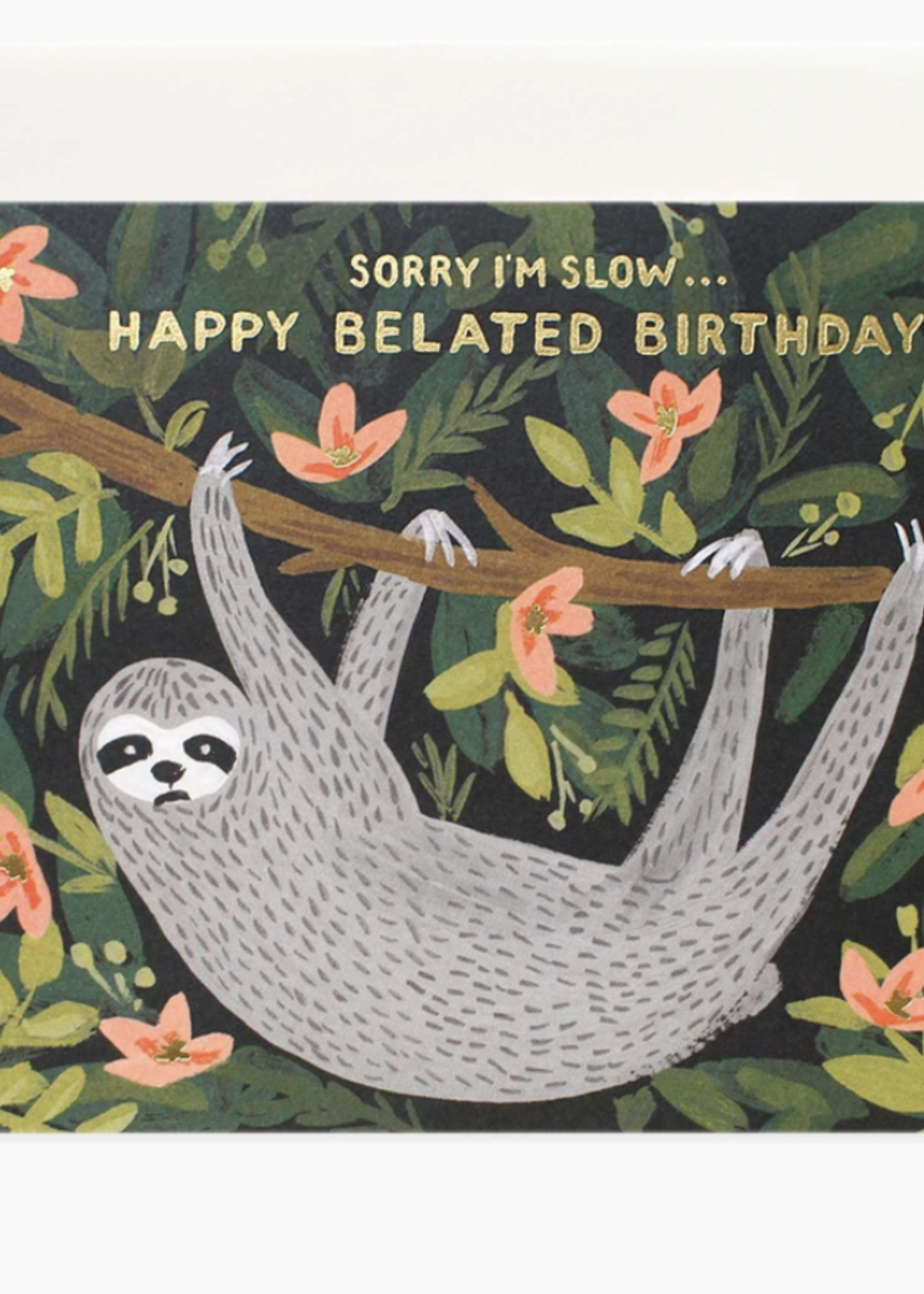 rifle paper co. rifle paper sloth belated birthday card