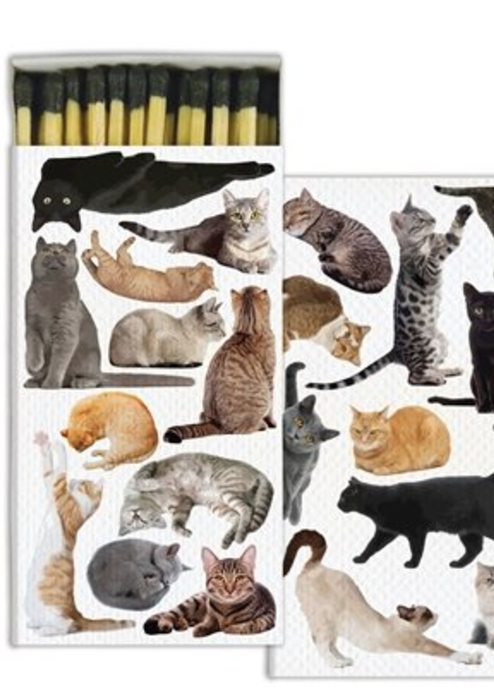 homart homart cat pack matches