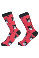 Sock Daddy - Black and White Cat - Red - Crew - Unisex