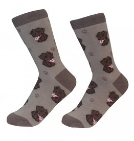 Sock Daddy - Labrador - Chocolate - Crew - Unisex