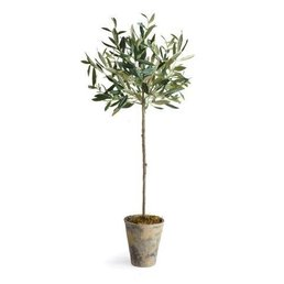 """Napa Home & Garden Olive Tree Potted 30"""""""