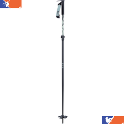 LINE Pollards Paintbrush Ski Pole 2020/2021